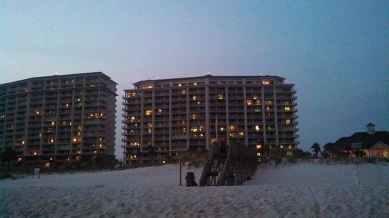 The Beach Club: beach
