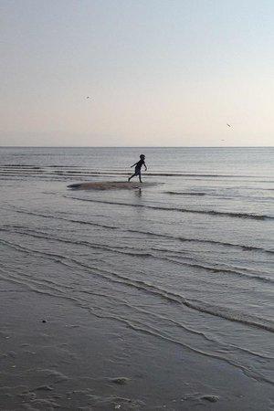 Beach Acres Resort : Morning play on the beach