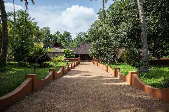 Emerald Isle - The Heritage Villa: The gardens