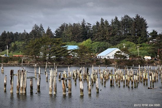 Bandon Inn: Decaying pilings on Coquille River in Bandon's Old Town