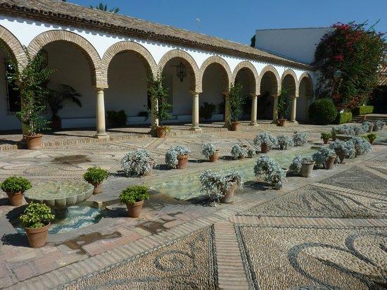 Palacio Museo de Viana : patio gardens