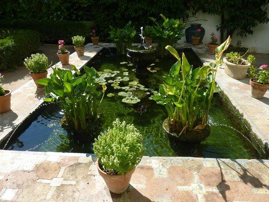 Palacio de Viana: patio gardens