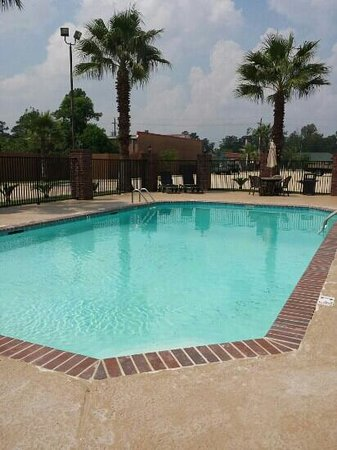 BEST WESTERN Bayou Inn & Suites: pool