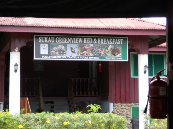 Sukau Greenview Bed & Breakfast: Sukau Greenview