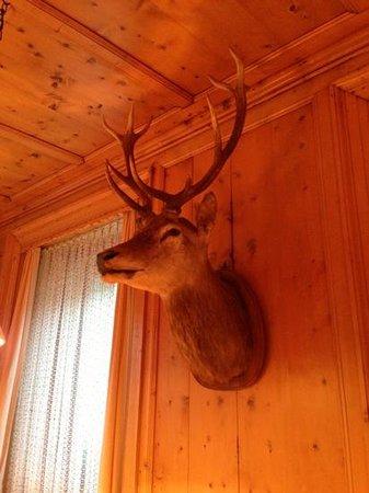 Post Hotel Restaurant: Deer's head in Stübli dining room