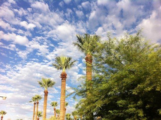 BEST WESTERN Rancho Grande: vista desde la piscina