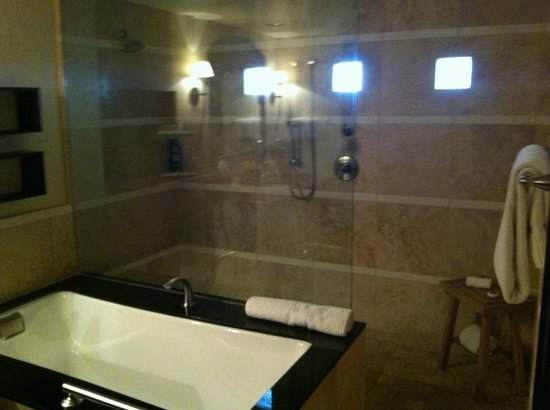 Omni Scottsdale Resort & Spa at Montelucia: Huge Bathroom and Shower