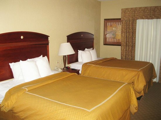 comfort suites near seaworld 67 9 0 updated 2019 prices rh tripadvisor com