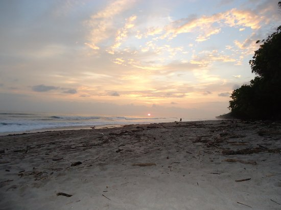 Mariposa Vacation Homes : Sunset from Beach 2