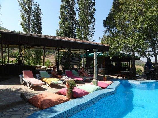 Atilla's Getaway: et la piscine !!