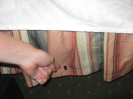 Best Western Plus Independence Park Hotel: cigarette burn in bedding bottom cover
