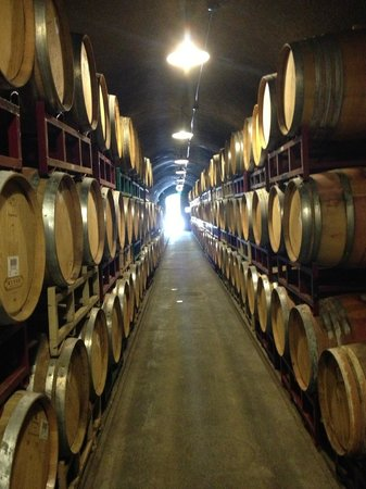 Kunde Family Winery : Wine cave