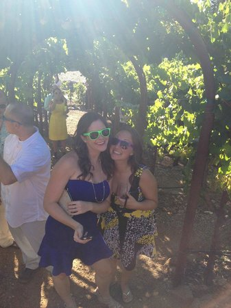Kunde Family Winery : Grape tasting