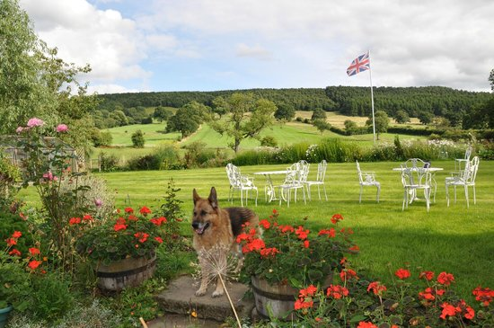 Fold Farm Guest House: Garden Vista