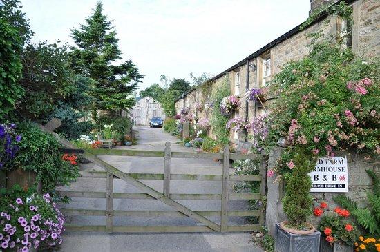 Fold Farm Guest House: Beautiful grounds