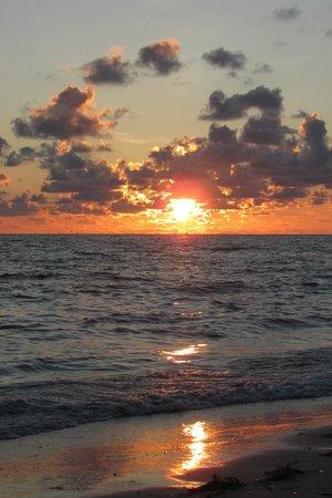 Residence Inn by Marriott St. Petersburg Treasure Island : Best sunsets anywhere