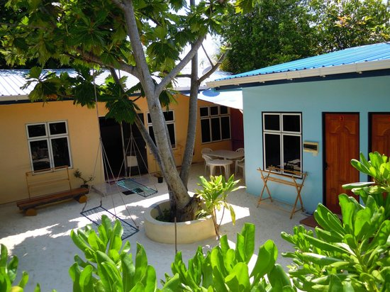 Surfers World Guest House Kaafu Thulusdhoo Lodge Reviews Price Comparison Island Maldives Tripadvisor