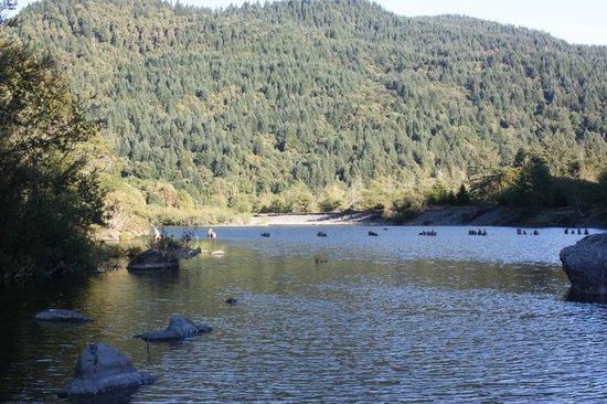 The Chetco River Inn: view down the river