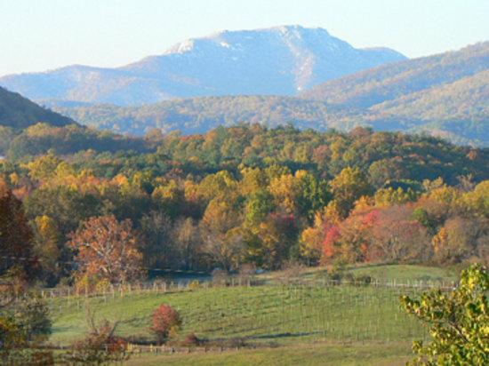 Little Washington Winery: Fall foliage and a dollup of snow