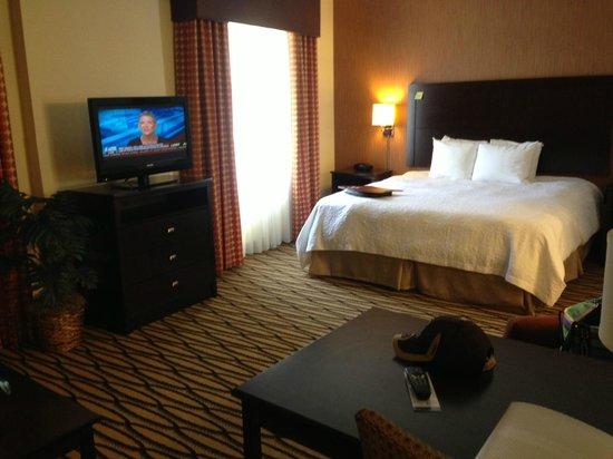 Hampton Inn & Suites Morgan City : King Suite