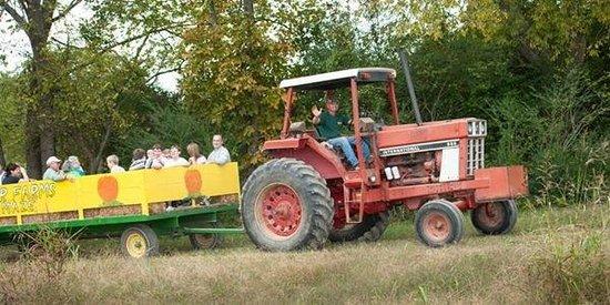 Kyker Farms Corn Maze