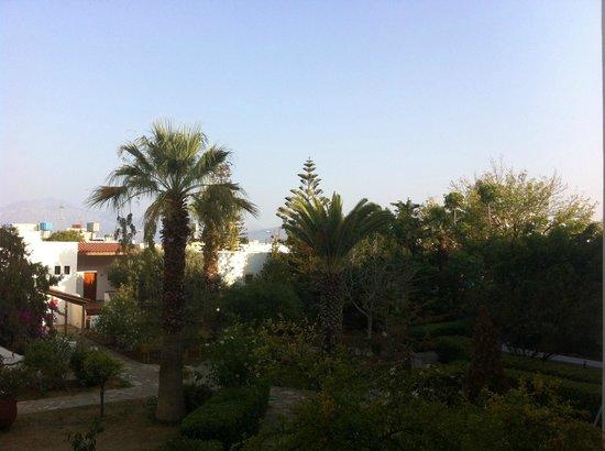 Hotel Mikro Village : Jardin