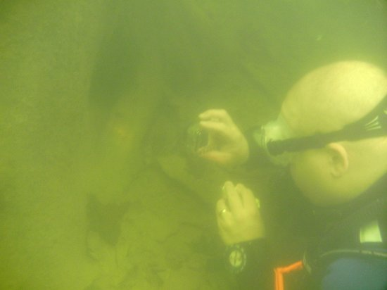 Greenbo Lake State Resort (Jesse Stuart Lodge): Underwater in the SCUBA Refuge