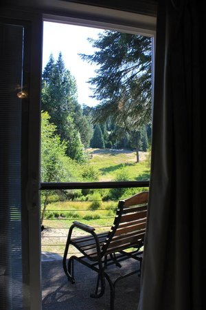 Yosemite Big Creek Inn: Our morning view with fab rocking chairs