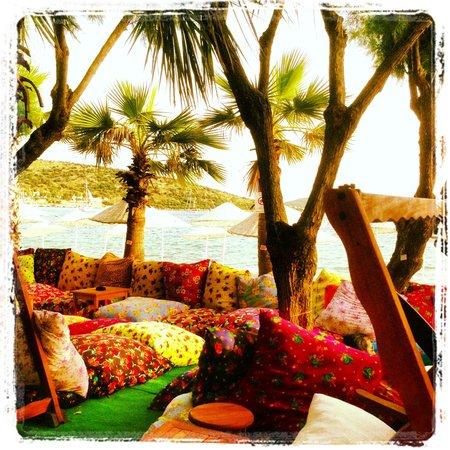 Okaliptus Hotel: Beach walk