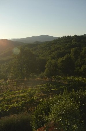 Porcigliano Bed and Breakfast: The view from the orange room