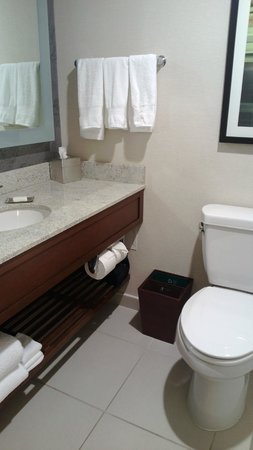 DoubleTree by Hilton Hotel South Bend : Bathroom