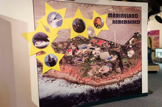 The Point Vicente Interpretive Center: Marineland at a glance
