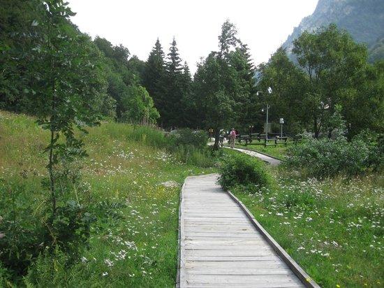 Giardino Botanico Valderia