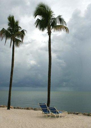 Tranquility Bay Beach House Resort: Beach area