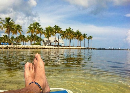 Tranquility Bay Beach House Resort: Relaxing in the swimming lagoon