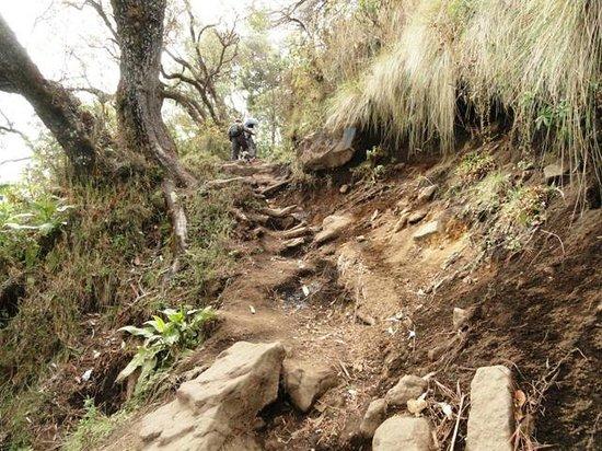 Santa Maria Volcano: it is a tough one