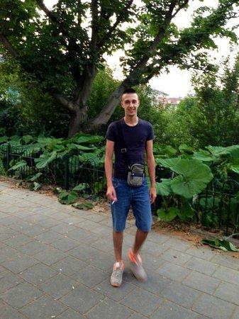 Hotel Central Park: A pochi passi dall'hotel