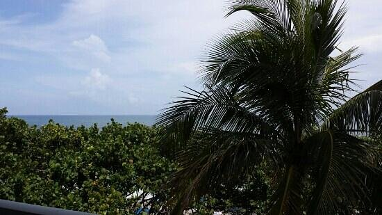 """Jupiter Beach Resort: Not what I would consider an UPGRADE from a """"partial ocean view"""""""