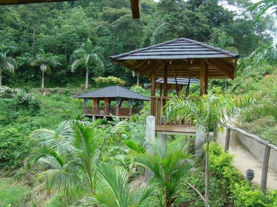 Vista Las Islas Hotel & Spa: Área de hamacas