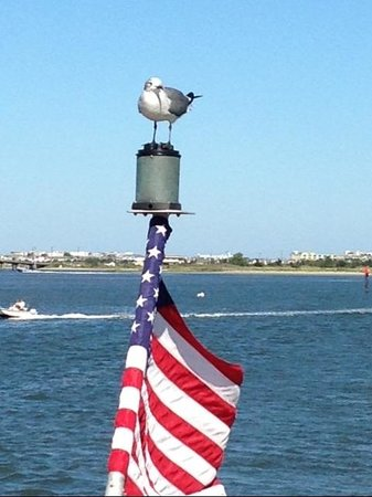 Spirit of Cape May: Hitching a Ride
