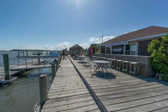 Snug Harbor Marina and Cottages : View of the Marina