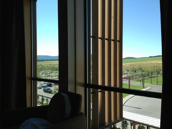 Coeur D'Alene Casino Resort Hotel: View from the room