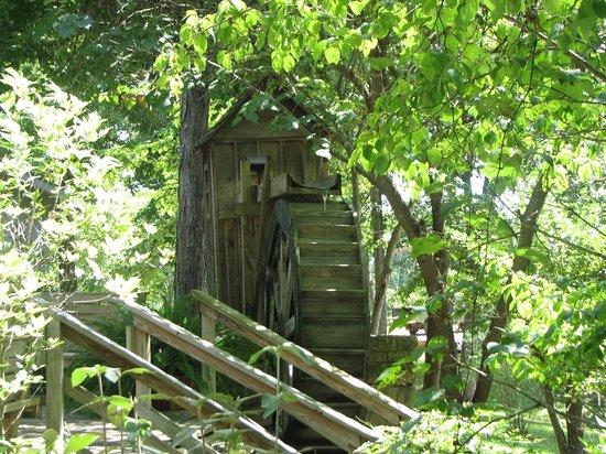 Blue Spring Heritage Center: Water wheel