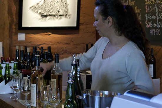 Mountford Organic Wines: Cider tasting