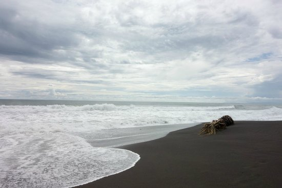 Surf Inn Hermosa : Beautiful black sand beach