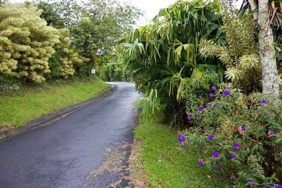Linda Vista Hotel: Very well maintained grounds