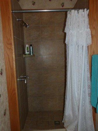 Historic Hotel Greybull : Shower