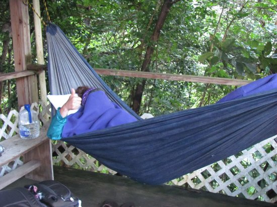 Rainforest Fruit Farm: Lovely hammocks
