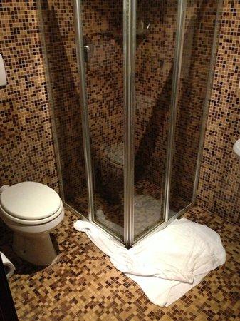 Albergo Piave: El baño... inundado y con toallas para no tener que nadar