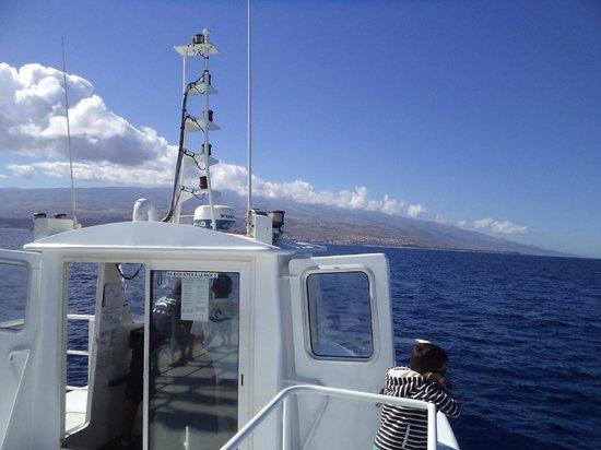 Le Grand Bleu : Vu du bateau sur l'île